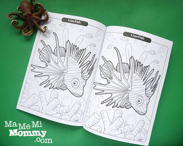 3D Coloring Book: Coloring Page