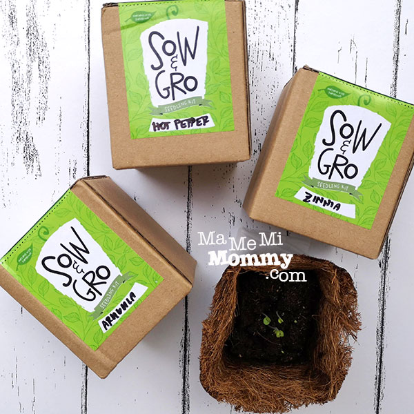 Sow and Gro Seedling Kit
